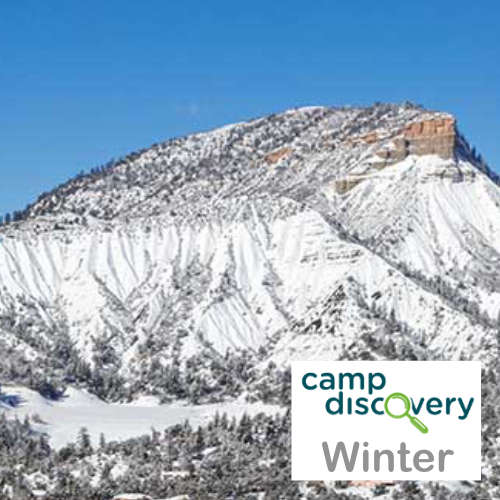 Winter Camps!